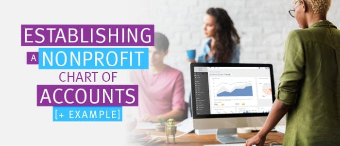 Check out this article on establishing a nonprofit chart of accounts plus and example to help get you started.