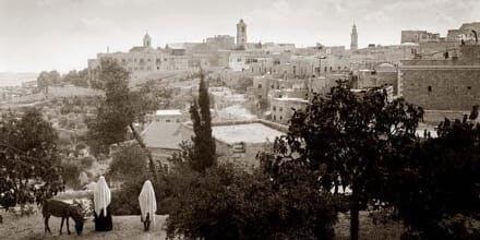 Middle East Landscape